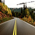Northern Highway Yukon by Mark Duffy