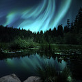 Northern Lights Over Lily Pond by Gigi Ebert