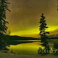 Northern Lights Over The Pines by Adam Jewell