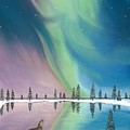 Northern Lights The Wolf And The Comet  by Jackie Novak