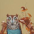 Northern Screech Owl by Jasper Oostland