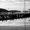 Northport Dock by Jeff Singer