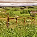 Northumberland Landscape by Martyn Arnold