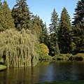 Northwest Garden by Roger Mullenhour
