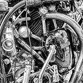Norvin Monochrome by Tim Gainey
