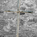 Nothing But The Cross by Teresa Blanton