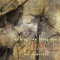Nothing Can Bring You Peace II by Char Szabo-Perricelli