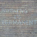Nothing Is Permanent by Margaret Fronimos