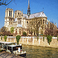 Notre Dame And The Seine Painterly by Joan Carroll