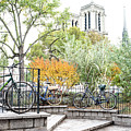 Notre Dame Behind Bicycle Park by Jean Gill