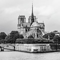 Notre Dame Cathedral by Helen Northcott