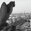 Notre Dame Gargoyle by Victoria Lakes