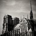 Notre Dame II by Olivier De Rycke