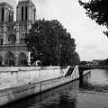 Notre Dame by Michelle Kenneth