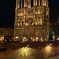 Notre Dame Night Painterly by Joan Carroll