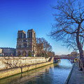 Notre Dame Of Paris  by Louloua Asgaraly