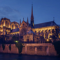 Notre Dame On The Seine by Joan Carroll