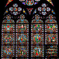 Notre Dame Stained Glass And Silhouette by Jenny Setchell