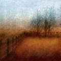 November Field by Kelly Kellogg