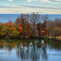 November Reflections by Lilia D
