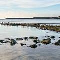 November Seascape 5 - Lyme Regis by Susie Peek