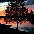 November Sunset by Judy Hall-Folde