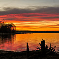 November Sunset Manasquan Reservoir Nj by Terry DeLuco