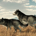 November Wolves by Daniel Eskridge