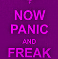 Now Panic 14 by Rob Hans