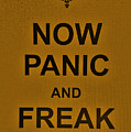 Now Panic 23 by Rob Hans