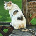 Nubby by Cara Bevan