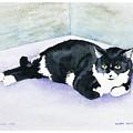 Nubby by Eileen Hale