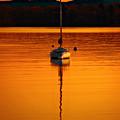 Nuclear Sunset by Meirion Matthias