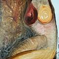 nude Landscape by Geraldine Liquidano