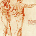 Nude Study Of Two Warriors by Raphael