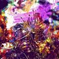 Nudibranch Flabellina Slug Seaslug  by PixBreak Art