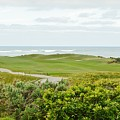 Number 1 From The Whites At Spanish Bay by Barbara Snyder