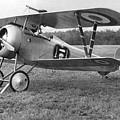 Nungesser's Nieuport 17 by Lin Grosvenor
