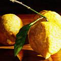 Nurse Beckys Lemons by Catherine G McElroy