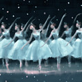 Nutcracker Ballet Waltz Of The Snowflakes by Beverly Brown