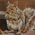 Nutkin by Cheryl Pass