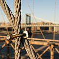 Nuts And Bolts Of The Brooklyn Bridge by Alissa Beth Photography