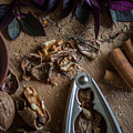 Nuts And Spices Series - Four Of Six by Kaleidoscopik Photography