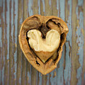 Nutty Love Affair by Lea Seguin