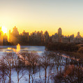 Ny Winter Panaroma by Ariane Moshayedi