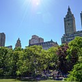 Nyc From Central Park by Bob Cuthbert