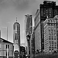 Nyc - Manhattan - One World Trade Center From The Battery Park by Carlos Alkmin
