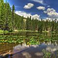 Nymph Lake 2 by Pete Hellmann