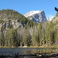Nymph Lake In Rocky Mountain National Park by Jennifer Forsyth