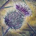 O' Flower Of Scotland by Jacqui Hawk